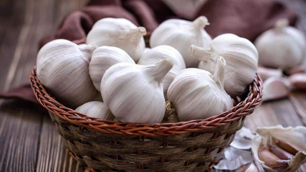 best-way-to-store-garlic