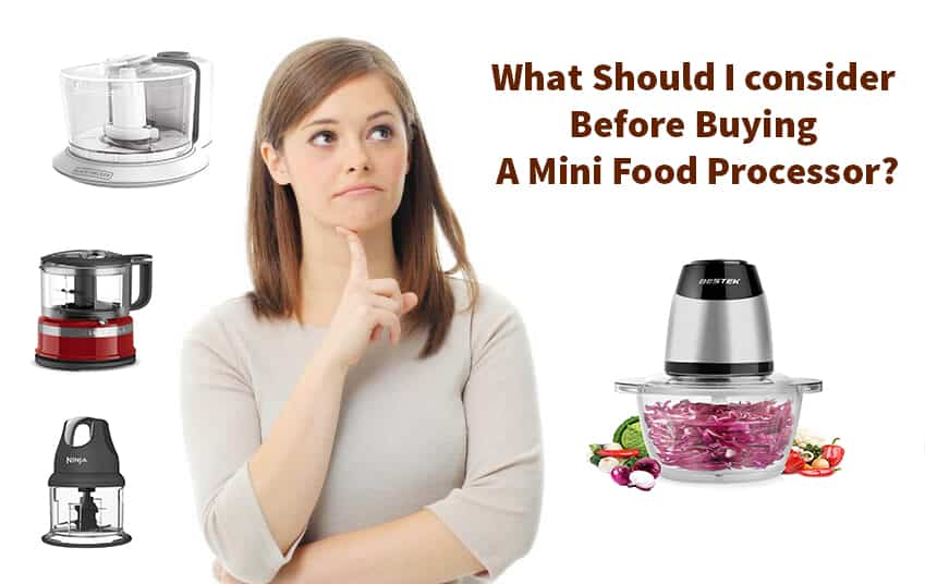 which-mini-food-processor-is-best