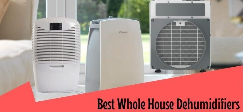10-Best-whole-house-dehumidifiers-reviews